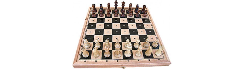 Chess for blindes
